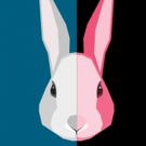 BWW Previews: WHITE RABBIT RED RABBIT at Baltimore Center Stage Promises Surprises for Audiences and Actors Alike