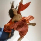 Liss Fain Dance Announces New Performance Installation At Z Space Photo