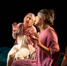 BWW Review: ESCAPED ALONE's Cast is the Welcome Light in a Dark Story Photo