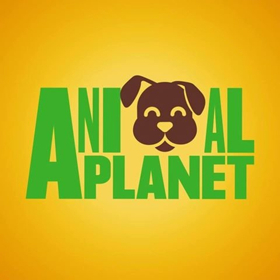 Animal Planet's Puppy Bowl Hits Highest Ratings Ever This Year