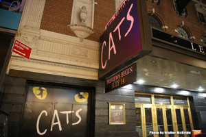 CATS On Sale At Broadway In Austin