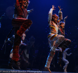 National Tour of CATS Plays Record-Breaking Engagement In Denver