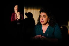 BWW Review: BIRTHMARK at Montreal, Arts Interculturels — Identity, Power, and Trauma