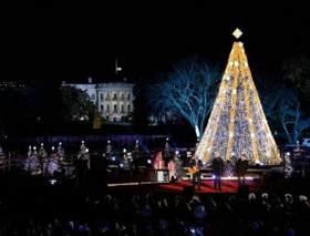 national christmas tree to be lit in presidents park today - Mythbusters Christmas Tree