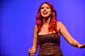 Brooklyn Opera Works at the Brooklyn Music School Presents A BROOKLYN CABARET