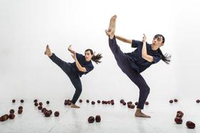 BWW Dance Interview: Stefanie Nelson - Artistic Director