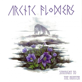 Arctic Flowers Share New Single