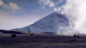Smithsonian Channel Presents THE WILD ANDES