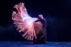 BWW Review: Celebrating Flamenco's Present and Future at the 2018 NEW YORK FLAMENCO FESTIVAL