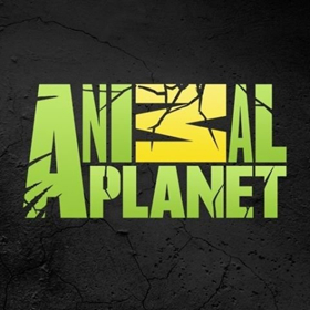 New Animal Planet Series INTO ALASKA Brings Viewers Along with the U.S. Fish and Wildlife Service