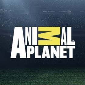 THE VET LIFE Returns to Animal Planet for Season Three, 1/13