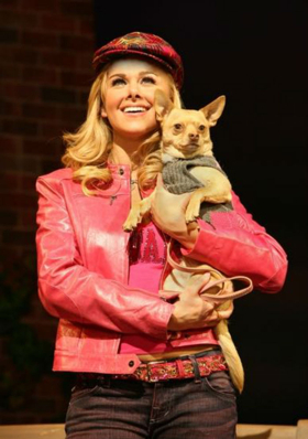 Chico, Canine Co-Star of LEGALLY BLONDE, Passes Away