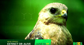 EXTINCT OR ALIVE Premieres on Animal Planet on 6/10