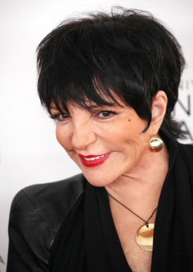 Judy Garland Musical CHASING RAINBOWS Gets the OK from Liza Minnelli Following Industry Presentation