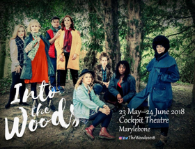 Stellar Cast Announced for INTO THE WOODS at The Cockpit