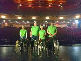 Rescue Greyhounds To Grace The Stage At The Opera House Manchester