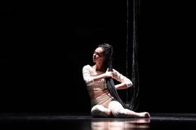 BWW Review: LA FRESQUE Fantasizes at Zorlu Center PSM