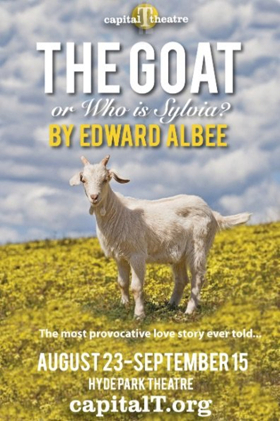 BWW Review: Rebecca Robinson Delivers Remarkable Performance in Albee's THE GOAT