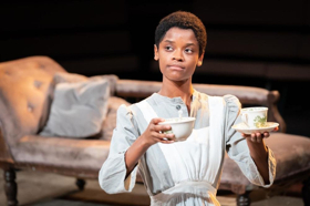 BWW Review: THE CONVERT, Young Vic