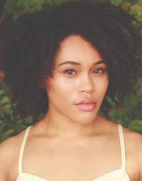 BWW Interview: Brittany Williams of A BRONX TALE the National Tour at The National Theatre