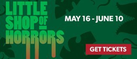LITTLE SHOP OF HORRORS Opens Tonight at Phoenix Theatre