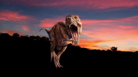 Museum of Natural History Launches New T-Rex Exhibit This Spring