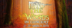New Theatre Company Bloom Creative Productions Presents INTO THE WOODS IN CONCERT