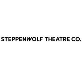 Steppenwolf Education & Senn High Senior Ensemble Present WHAT IF?