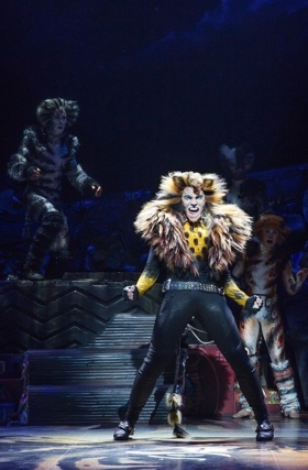 Service Dog Runs Amok During CATS Opening Number!