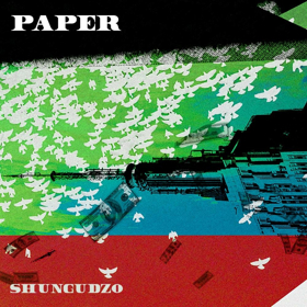 Shungudzo Releases Official Video For PAPER