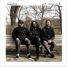 Sebadoh Share Video for New Song SUNSHINE From ACT SURPRISED Out 5/24