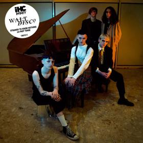 Glasgow's Walt Disco Release Single STRANGE TO KNOW NOTHING