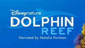 Natalie Portman To Narrate Disneynature's DOLPHIN REEF