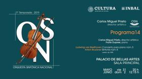 El joven pianista alemán Frank Dupree acompañará a la Orquesta Sinfónica Nacional en el Palacio de Bellas Artes