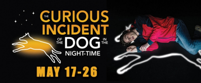 Review: THE CURIOUS INCIDENT OF THE DOG IN THE NIGHT-TIME at Theatre Tulsa