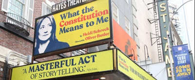 BWW TV: Broadway Walks the Red Carpet at WHAT THE CONSTITUTION MEANS TO ME