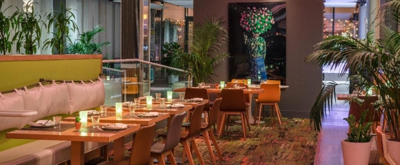 BWW Review: GREEN FIG - SOCIAL DRINK & FOOD - GREEN ROOM - Your Destinations in the Theatre District