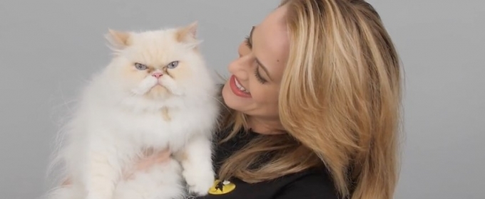 VIDEO: Broadway's CATS Supports Shelter Felines, Pet Adoption in New Campaign