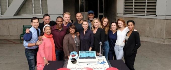 Photo Cast Of Greys Anatomy Celebrates 300th Episode