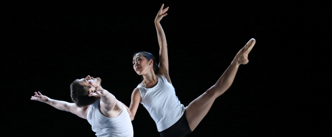 BWW Review: NICOLE FONTE'S BEAUTIFUL DECAY at Wilma Theater