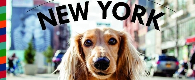 BWW Review: CANINES OF NEW YORK by Heather Weston for Dog Lovers and Many More