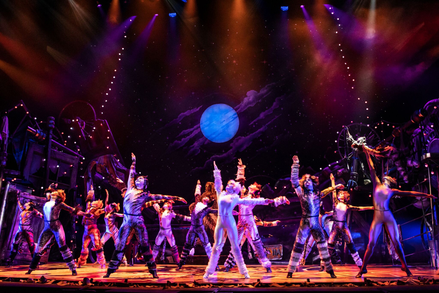 BWW Review: CATS is Still the Cat's Meow