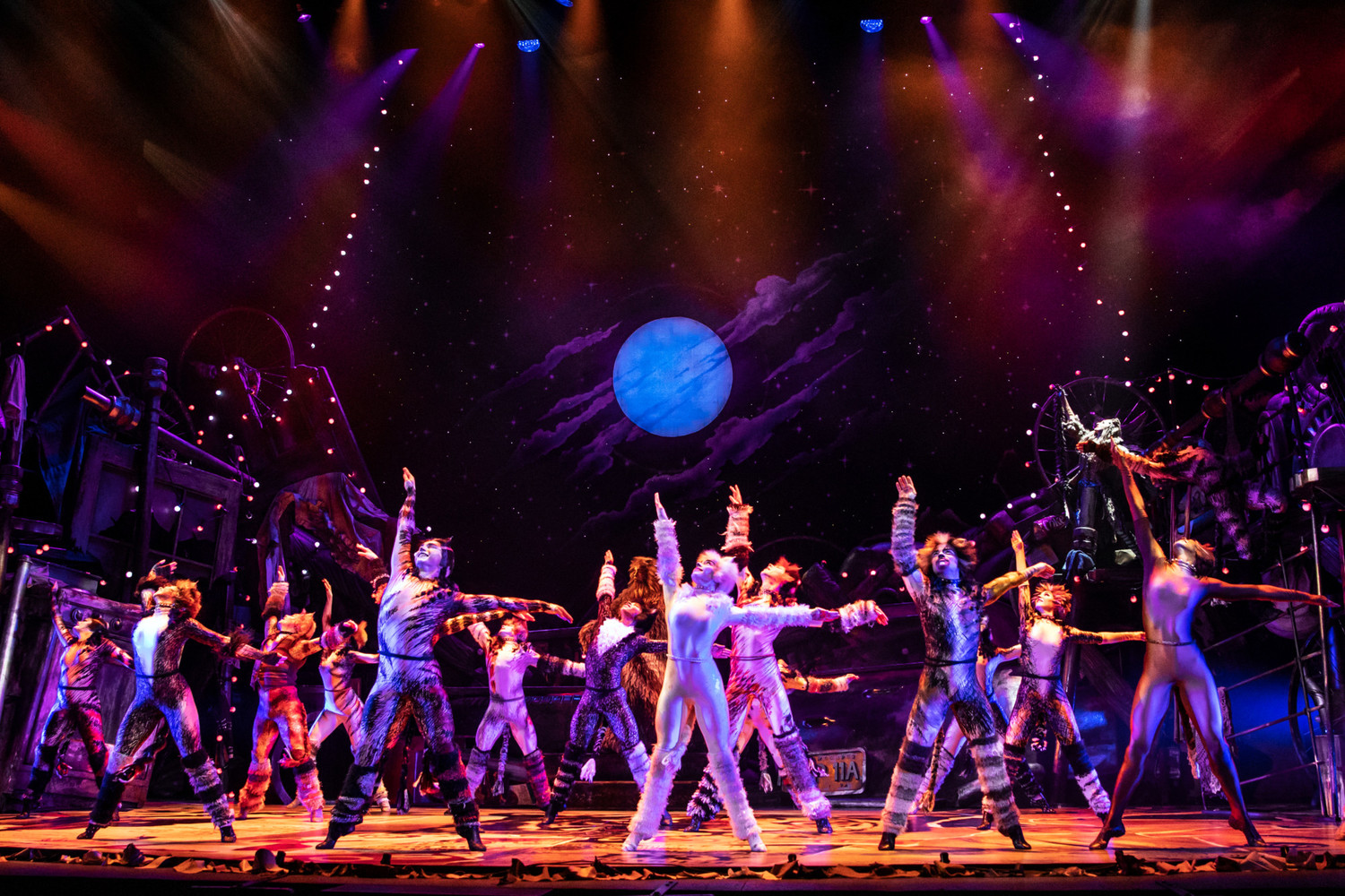 BWW Review: North American Tour of CATS Epitomizes Excellence