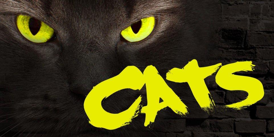 CATS Playing At Bruce Mason Centre 4/20!