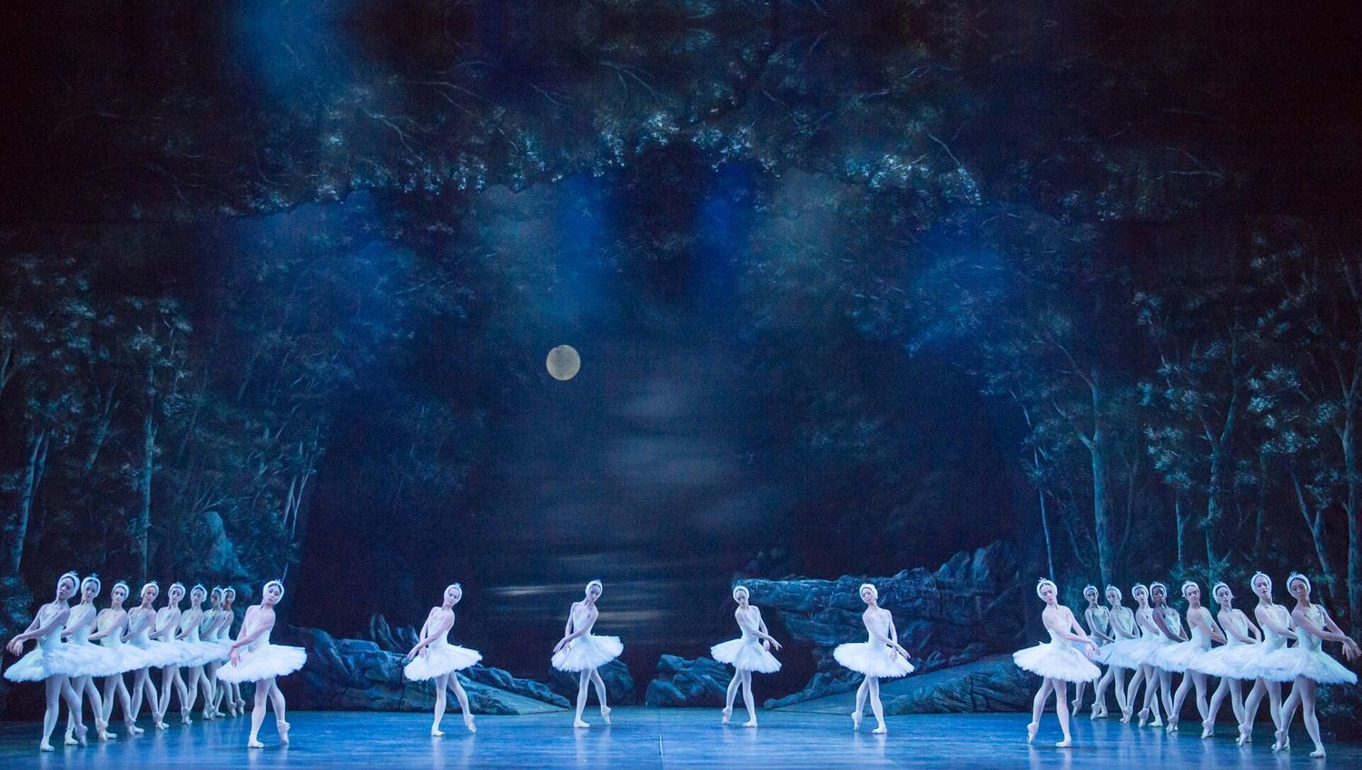BWW Review: SWAN LAKE, Bristol Hippodrome
