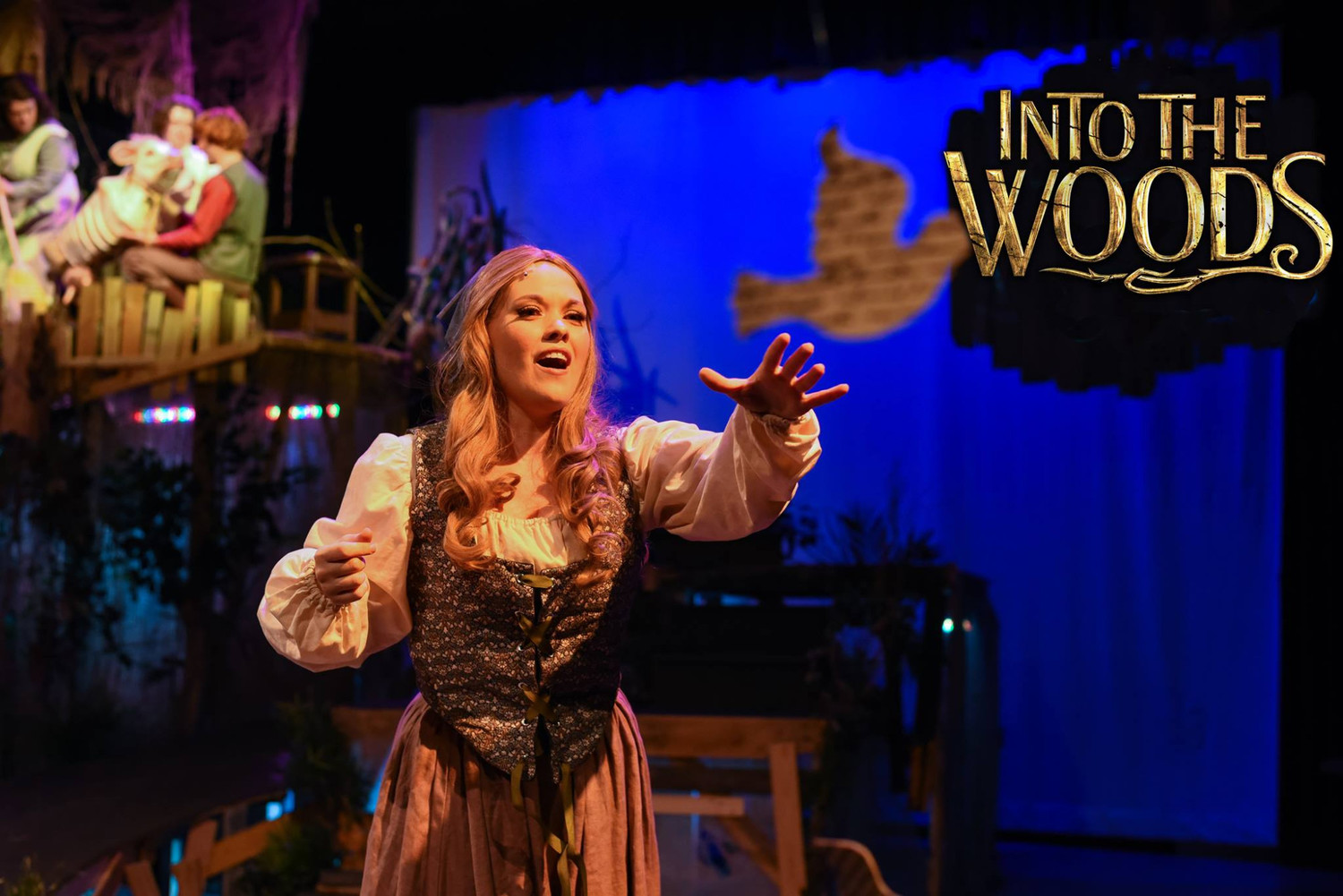BWW Review: Pitch Perfect INTO THE WOODS Dazzles at Centre Stage