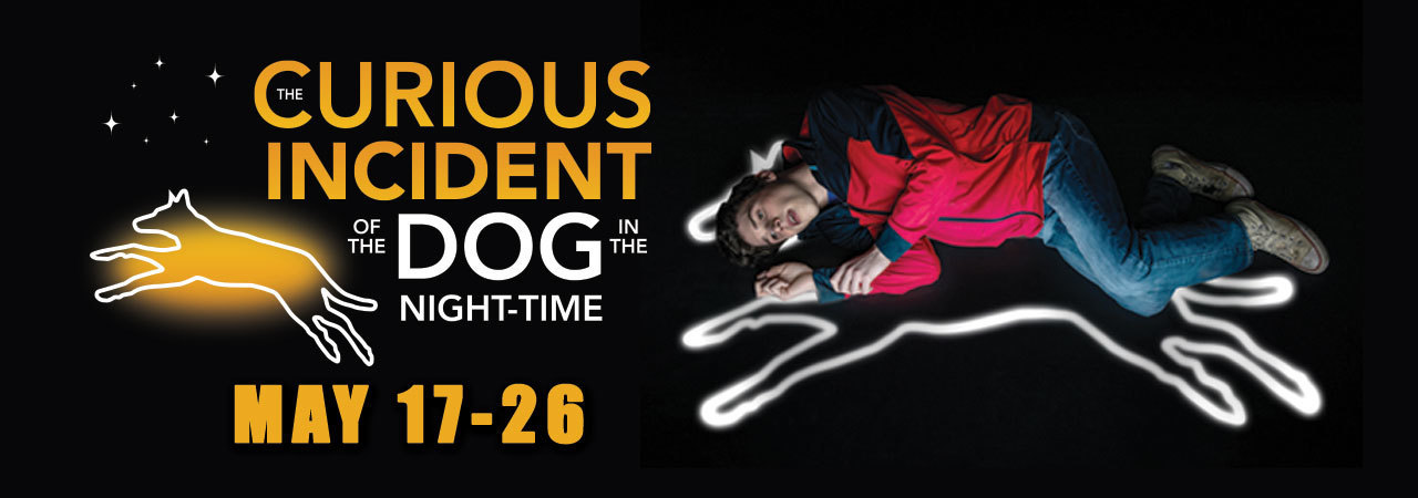 BWW Review: THE CURIOUS INCIDENT OF THE DOG IN THE NIGHT-TIME at Theatre Tulsa