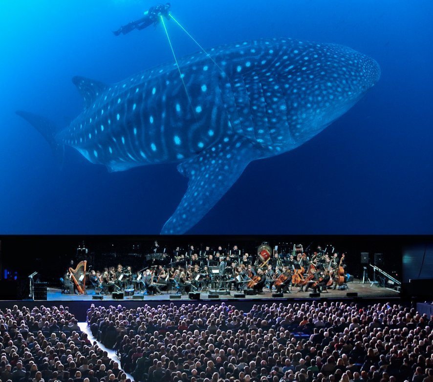The City of Prague Philharmonic Orchestra to Provide Live Accompaniment to BLUE ...
