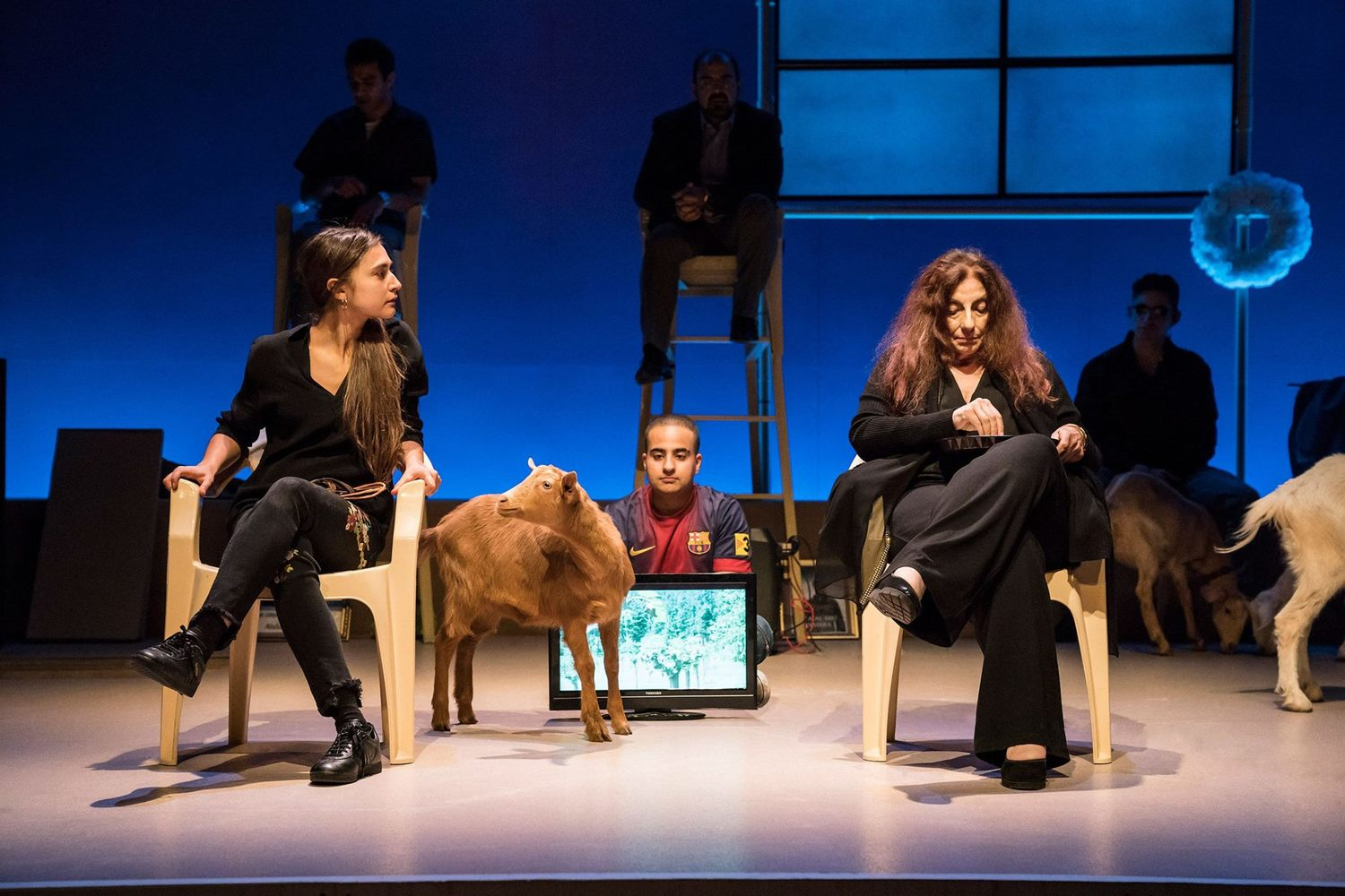BWW Review: GOATS, Royal Court