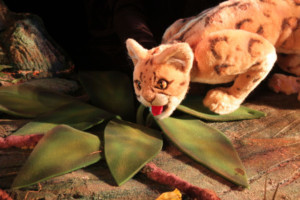 The Rainforest Comes Alive At The Center For Puppetry Arts